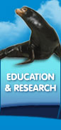 Education and Research