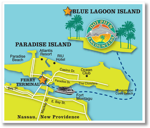 Arial Map Dolphin Encounters Bahamas Travel Destination Meet